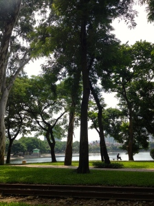 A beautiful afternoon in the park